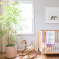 Kids rooms with plants