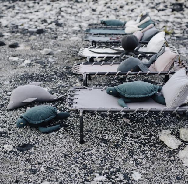 turtle-organic-cotton-cushion