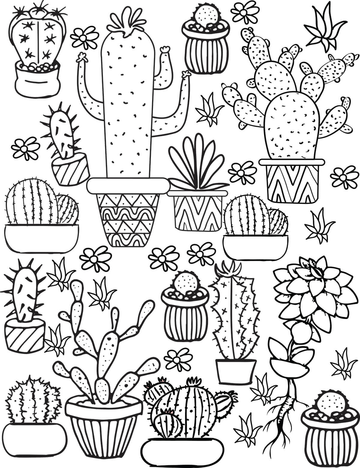 cacti-and-succulents-coloring-pages