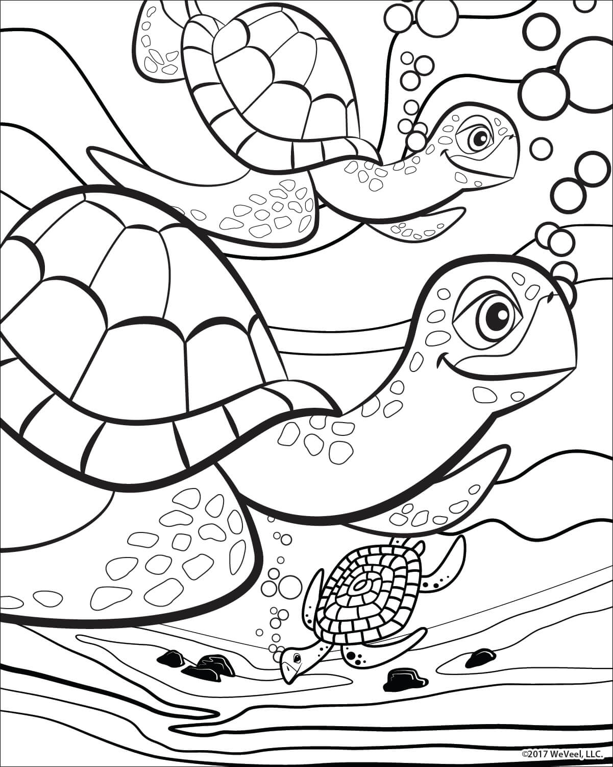 turtle colouring page kids